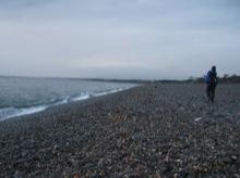 海岸は丸い石だよ!なんだか湖畔みたいだ。