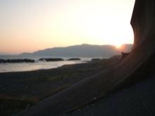 またまた、東海道を離れて海岸に出てみた。