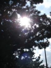 今日はとてもいい天気だった。