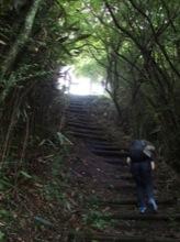 マユミンも一生懸命登ってる。